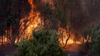 Yangından etkilenenlerin tedavileri tamamlanıyor