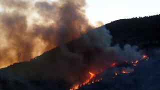 Ciğerimiz yanıyor: Mersin'de orman yangını