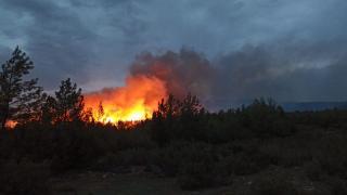 Muğla Kavaklıdere'deki yangın kontrol altına alındı