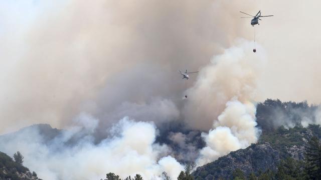 5 ilde yangınlarla mücadele sürüyor