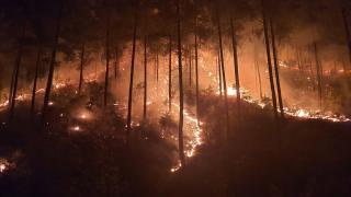 Güneyde sıcaklık yükseliyor, yangın tehlikesi sürüyor