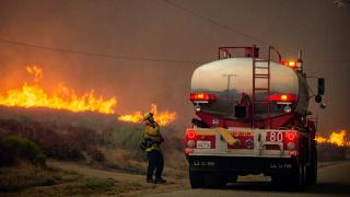 Dünya yangınlarla mücadele ediyor