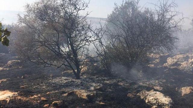 Gaziantepte ormanlık alanda çıkan yangın kontrol altına alındı