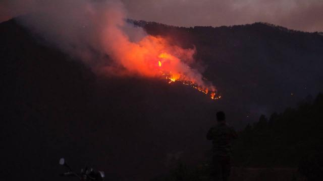 Aydında orman yangını: Bir mahalle tahliye edildi