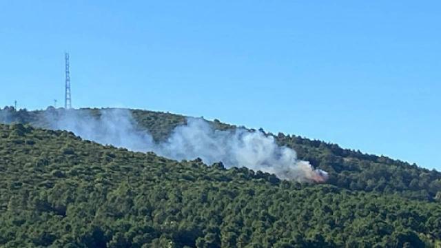 Aydos Ormanında yangın çıkaran sanığa verilen ceza hukuka uygun bulundu