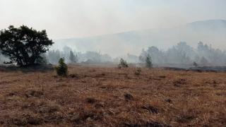 Balıkesir ve Denizli'de orman yangını
