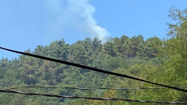 Beykozda çıkan orman yangını kontrol altında