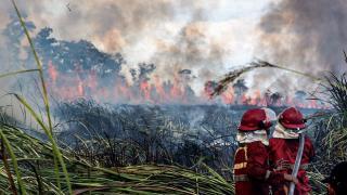 Endonezya'da yangın