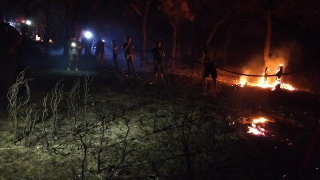 Çanakkaledeki yangın söndürüldü