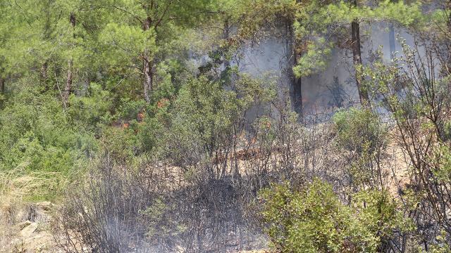 Ispartada ormanlık alanlara girişler 16 Ağustosa kadar yasak