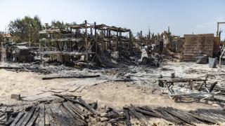 Dünya'da orman yangınları: Sicilya adası