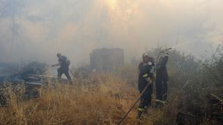 Yunanistan'da orman yangınları devam ediyor