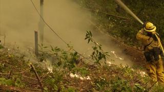Kaliforniya'daki orman yangını yeniden büyümeye başladı
