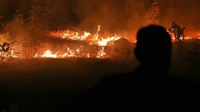 Kuzey Makedonyada orman yangını