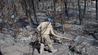 Mehmetçik'ten yangın söndürme çalışmalarına destek