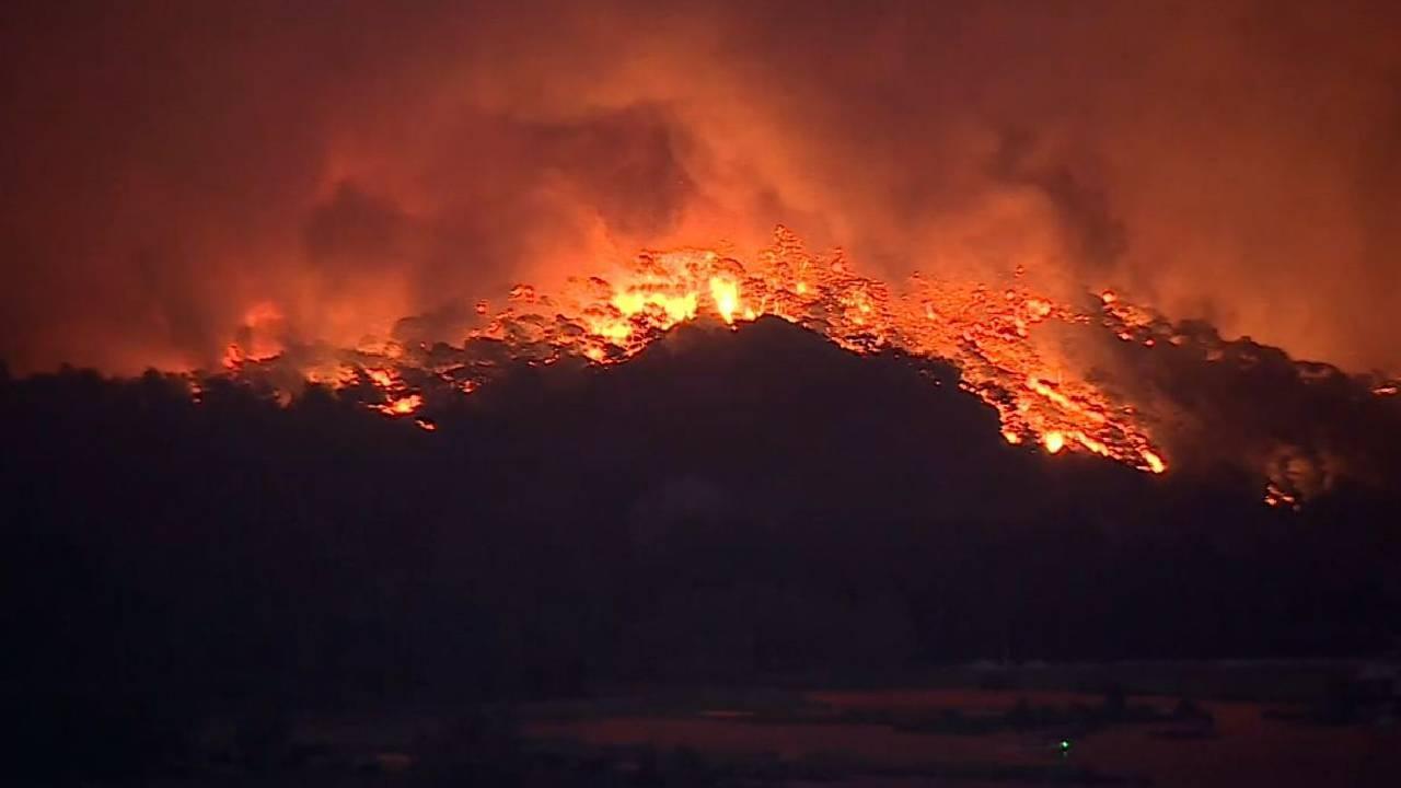 Orman yangınlarını fırsata çevirenleri şikayet edin