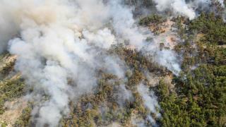 Antalya ve Muğla'da yangından etkilenen 16 kişinin tedavisi sürüyor