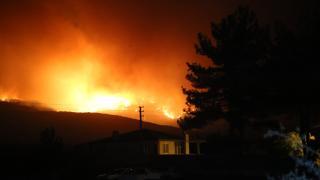 Muğla'da orman yangını: Yangın Menteşe ilçesine ulaştı