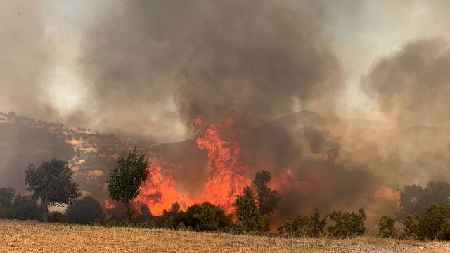 10 yılda 26 binden fazla orman yangını çıktı