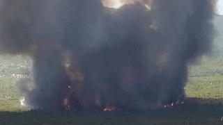 Yunanistan yeni orman yangınlarıyla mücadele ediyor