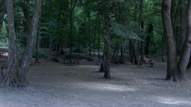 Kayseride ormanlık alanlara giriş 30 Eylüle kadar yasak