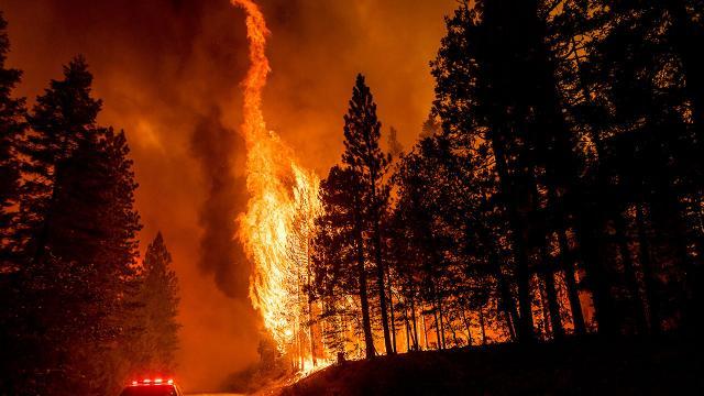 Fransanın güneyinde orman yangını