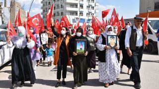 Şırnak'ta terör mağduru aileler eylem yaptı