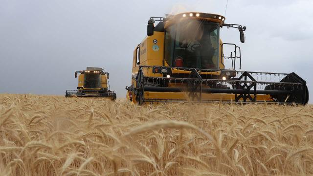 Tarım sektörü ihracatta atağa kalktı