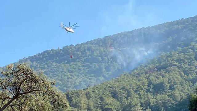 Milasta çıkan orman yangını kontrol altına alındı