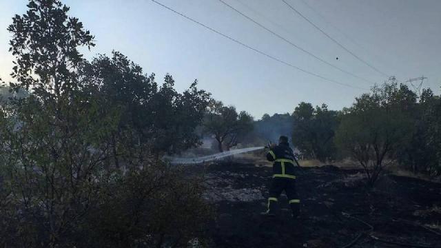 Mardinde ormanlık alanda çıkan yangın söndürüldü