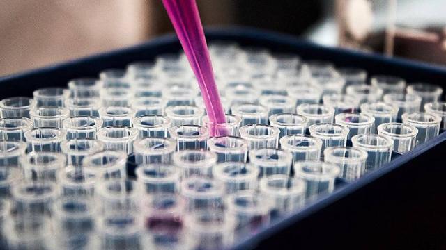 Prof. Dr. Balık: Koronavirüs ilacının Faz-3 çalışmaları Ankarada başladı