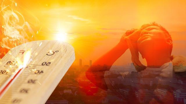 """BMden """"sıcaklık"""" uyarısı: Dünya 2,7 santigrat derecelik artışa doğru gidiyor"""