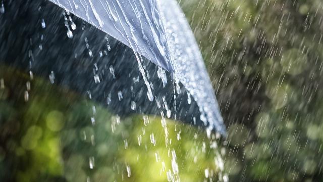 Karadenizde kuvvetli yağış bekleniyor