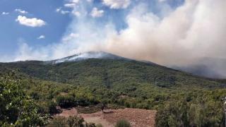 Tunceli'de örtü yangını: Havadan müdahale ediliyor