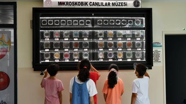 """Bilim Sanat Merkezindeki """"Mikroskobik Canlılar Müzesi"""", öğrencilerin ilgi odağı oldu"""