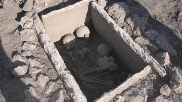 Çayönü Höyüğünde 5 bin yıllık sandık mezar bulundu