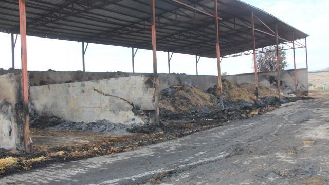 Amasyada besi çiftliğinde çıkan yangında 200 ton saman ve 25 ton yem zarar gördü