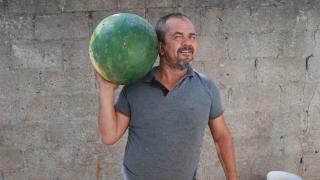 Bayramiçli üretici 20 kilogramlık karpuz yetiştirdi