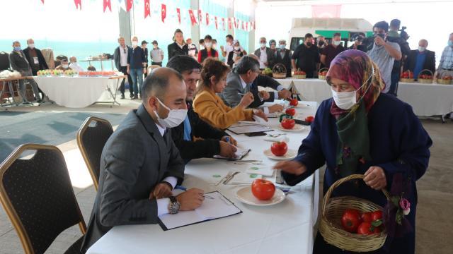 Gölbaşında Elma ve Domates Yetiştiriciliği Yarışması düzenlendi