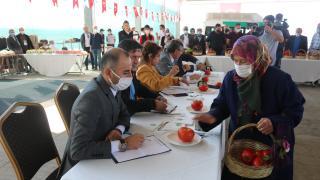 Gölbaşı'nda Elma ve Domates Yetiştiriciliği Yarışması düzenlendi
