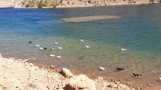 Baraj gölü çekildi, eski yapılar gün yüzüne çıktı