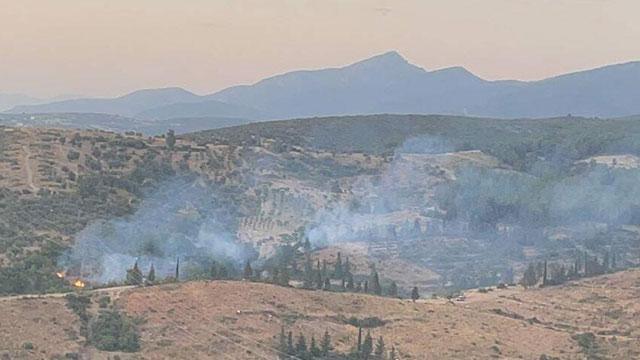 İzmirde orman yangını