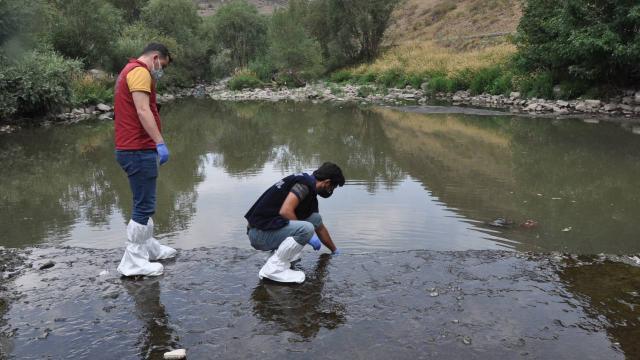 Kars Çayı'ndaki balık ölümlerinin nedeni belli oldu
