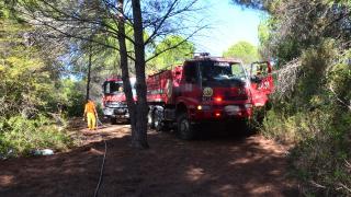 Manavgat'ta 3 noktada başlayan orman yangınları söndürüldü