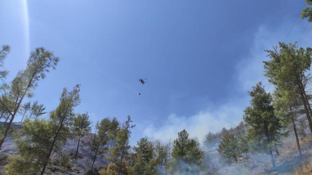 Mersinin Anamur ilçesinde çıkan orman yangınına müdahale ediliyor