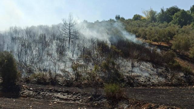 Osmaniyede orman yangını çıktı