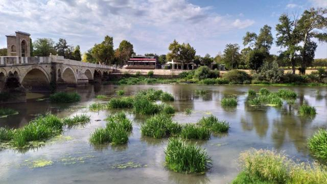 Su seviyesi dibe vuran Tunca Nehri'nde ot öbekleri artıyor