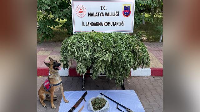 Malatyada uyuşturucu operasyonu