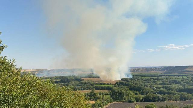 UNESCO listesindeki Hevsel Bahçelerinde yangın