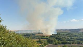 UNESCO listesindeki Hevsel Bahçeleri'nde yangın